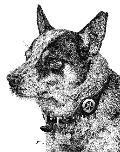 Texas Heeler Fine Art Print or Notecards
