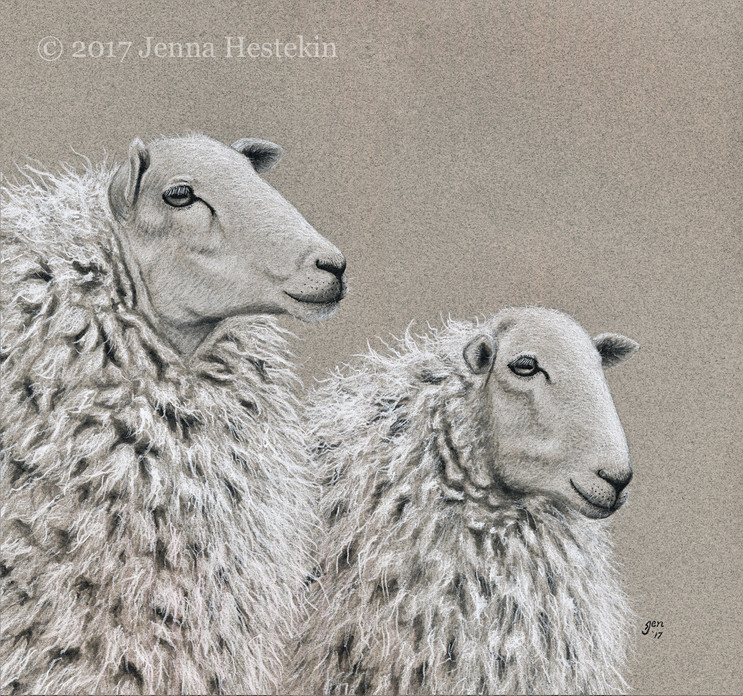 Sheep Pair ~ Commission