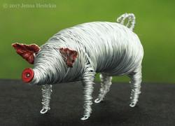 Pig ~ Sold