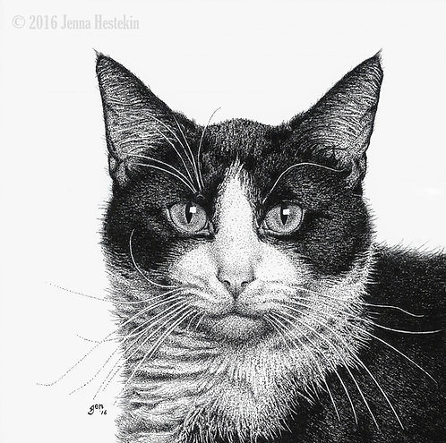 Tuxedo Cat Fine Art Print or Notecards
