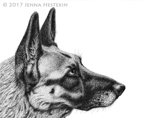 Shelly the German Shepherd ~ Commission