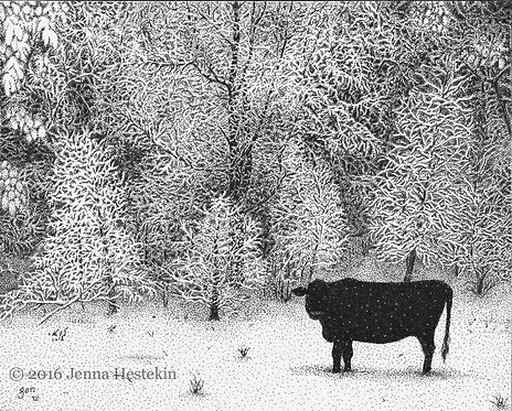 Winter Cow Fine Art Print or Notecards
