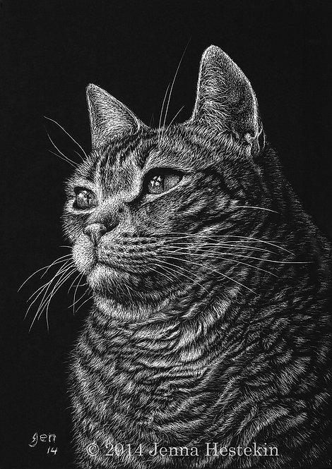 Oliver Scratchboard Fine Art Print