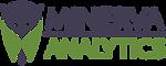 cropped-Minerva-Analytics-Logo-2019-LAND