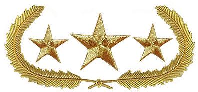 New General Collar three stars.jpg