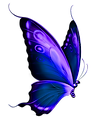 Butterfly (32).png