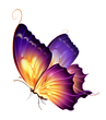 Butterfly (22).png