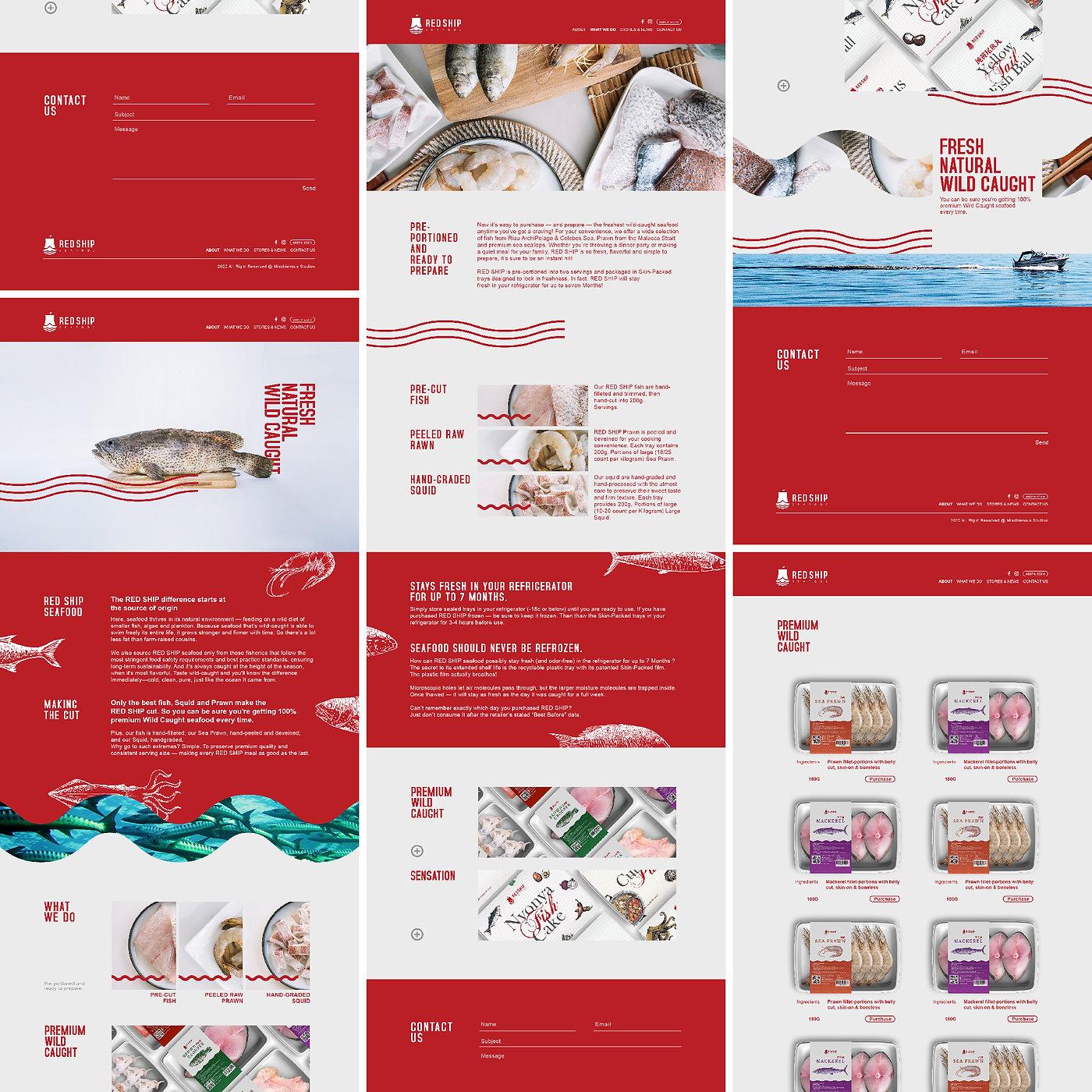 Red Ship Web Design.jpg