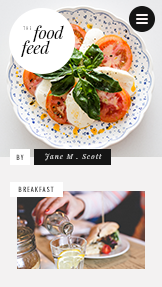 Lifestyle website templates – The Food Feed