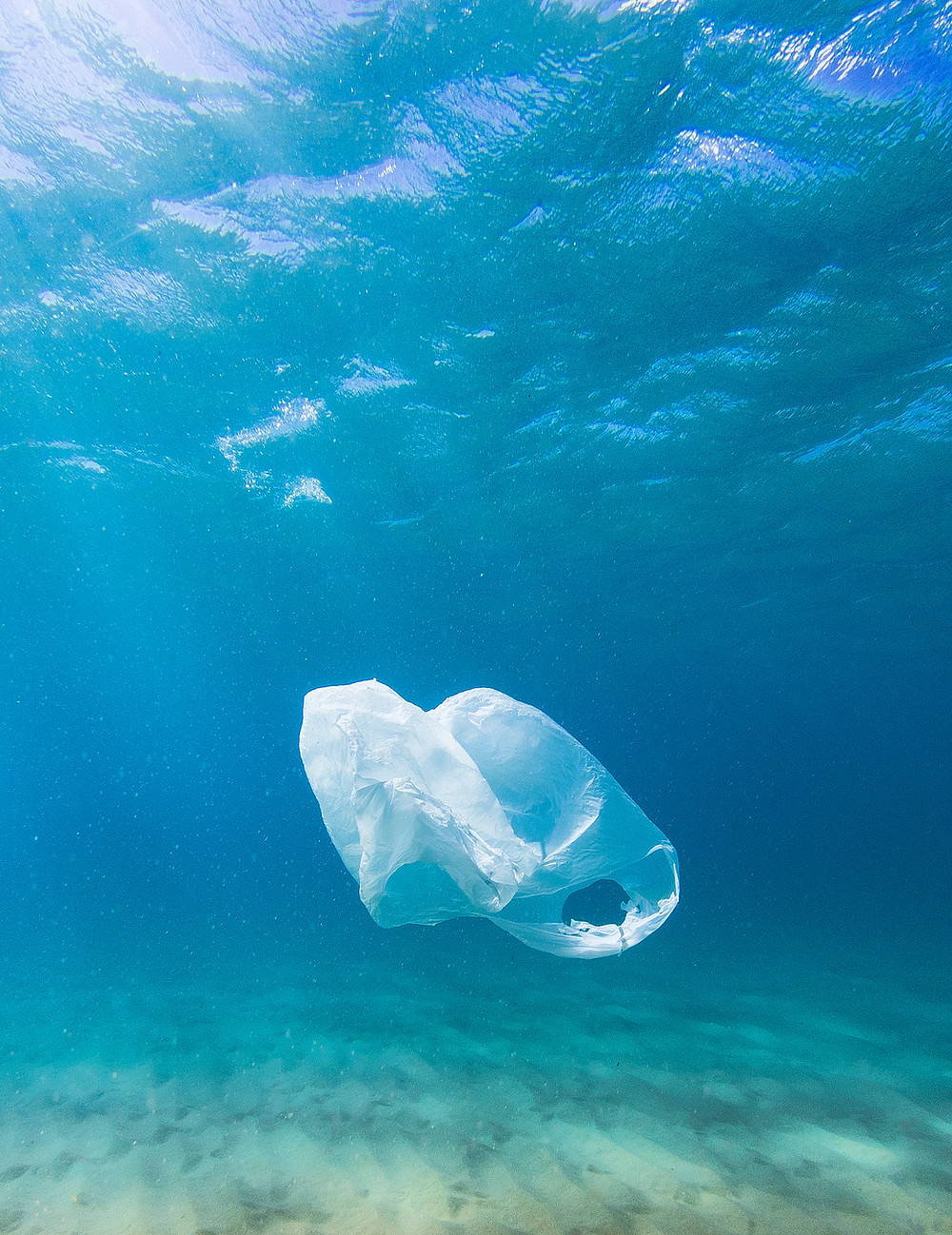 A littered plastic bag in the ocean