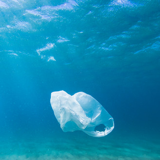 Banning plastic on a daily basis