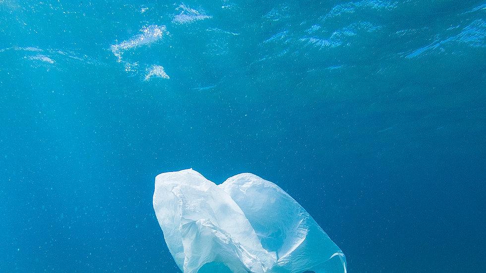 Garbage Management Plan - Generic