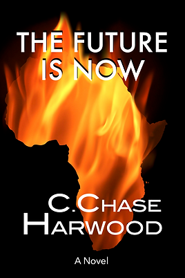 The Future is Now Cov. Burning Africa.png