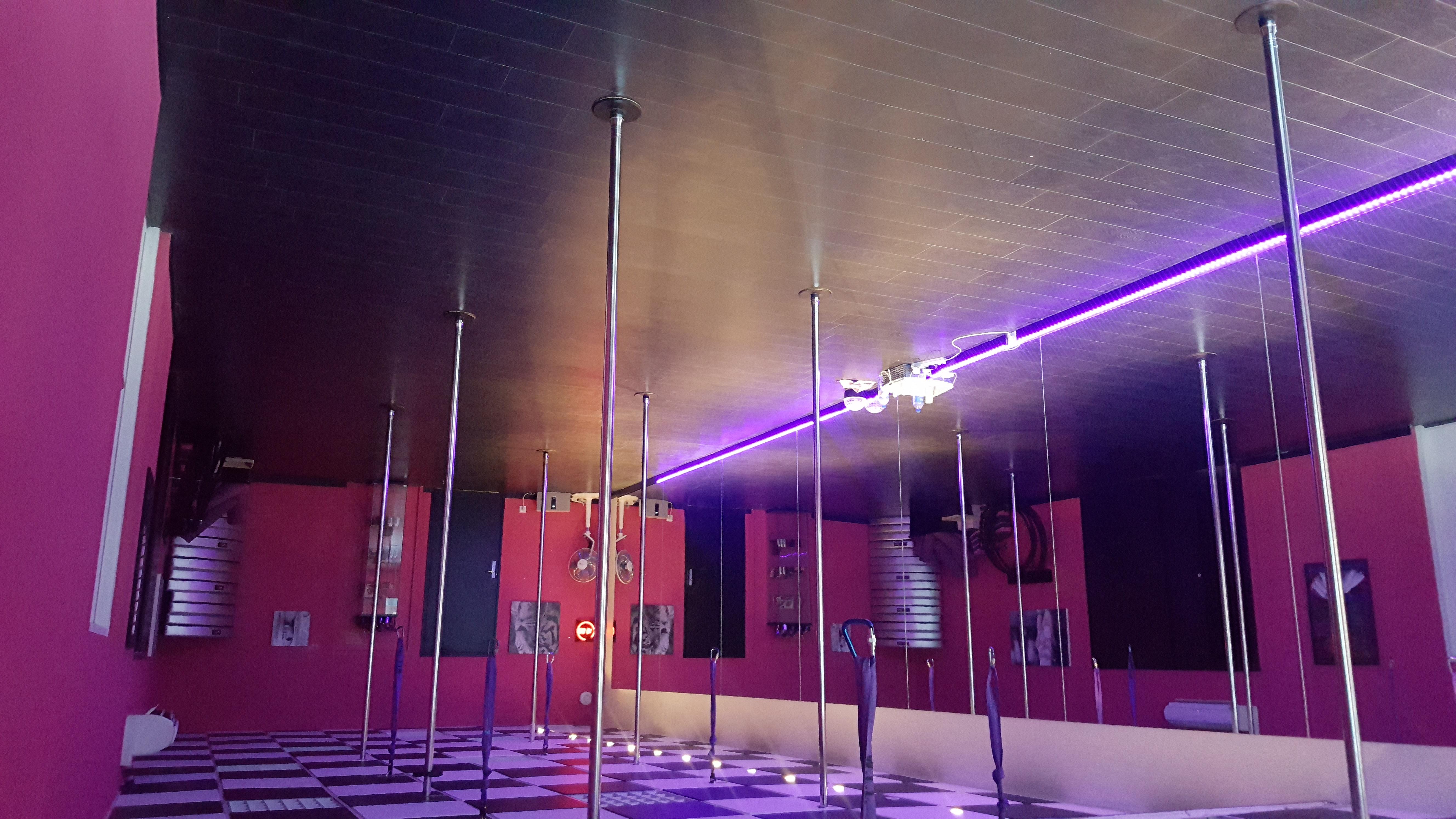 Salle de POLE DANCE MARYLINE