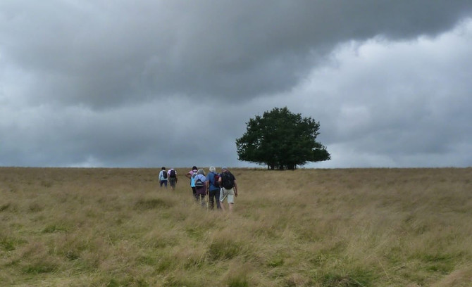 8 PI00676a bbq short walk windmill hill .jpg