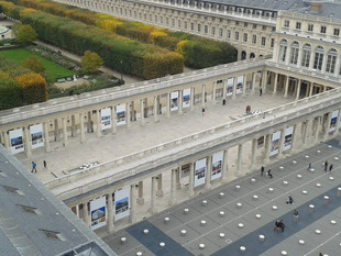 DGT_AFEX_palais Royal _paris.jpg