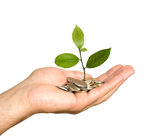 Hand with tree growing from pile of coin