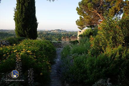 Vue sur Avignon et le Rocher des Doms de