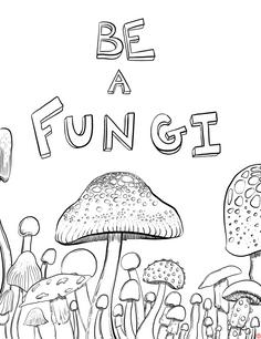 Be A Fungi