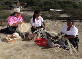 La vannerie du Nord du Pérou