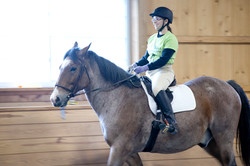 horseshow2015_033