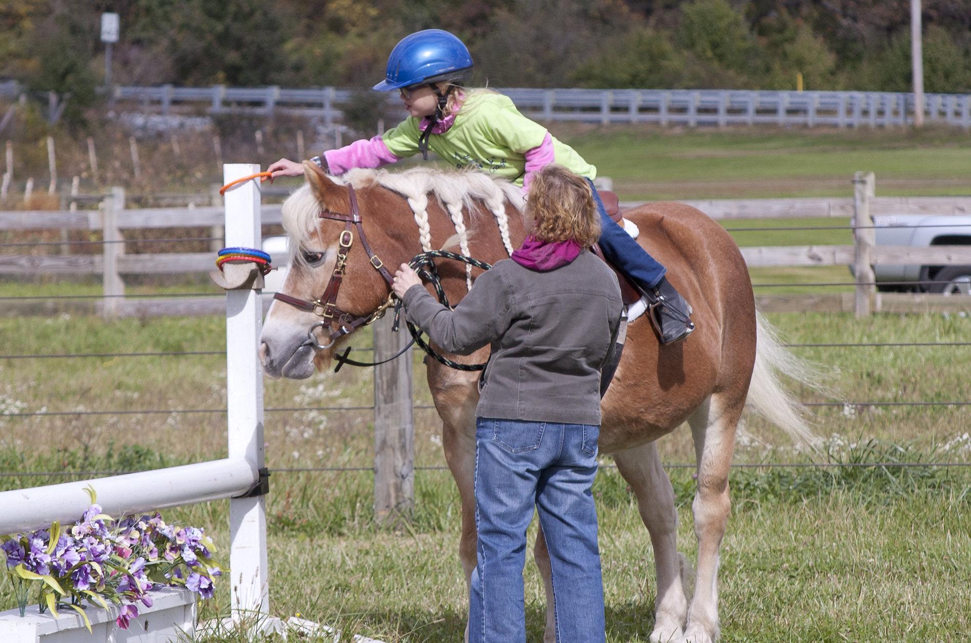 horseshow2015_005