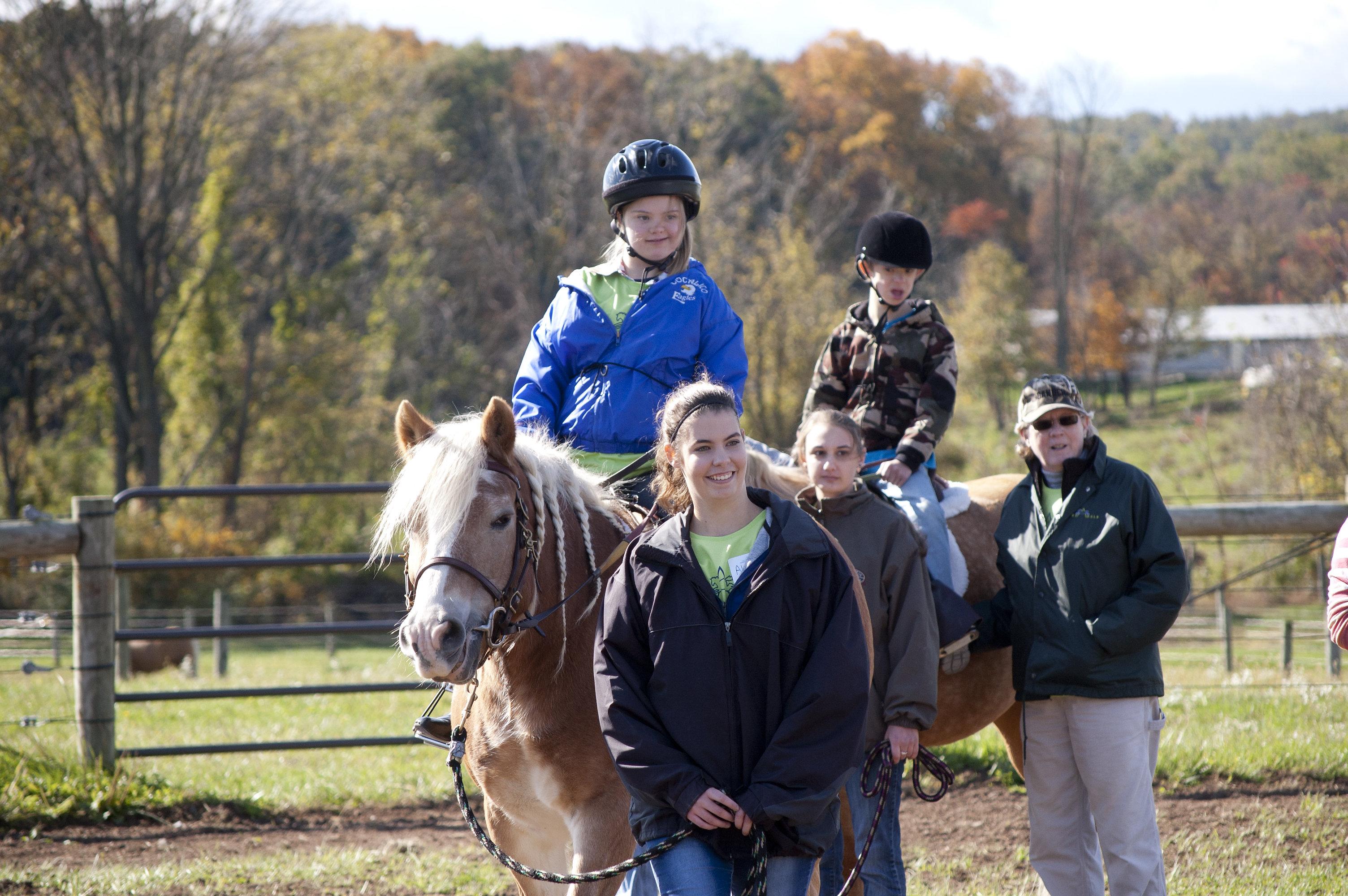 horseshow2015_011
