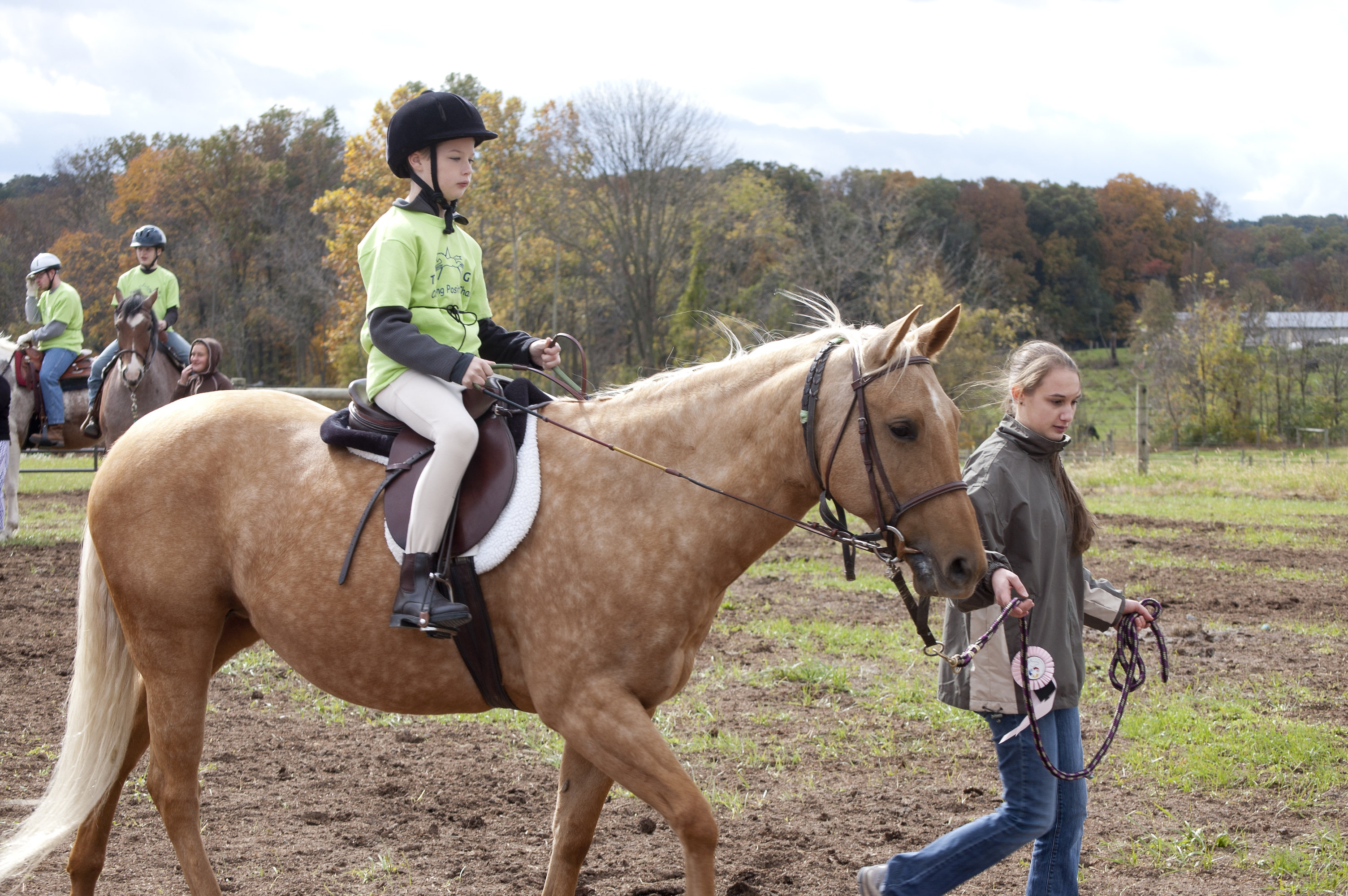 horseshow2015_006