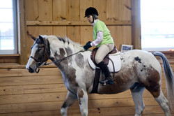 horseshow2015_032