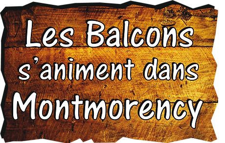 logo-Balcons-S'animent-copie-copie.png