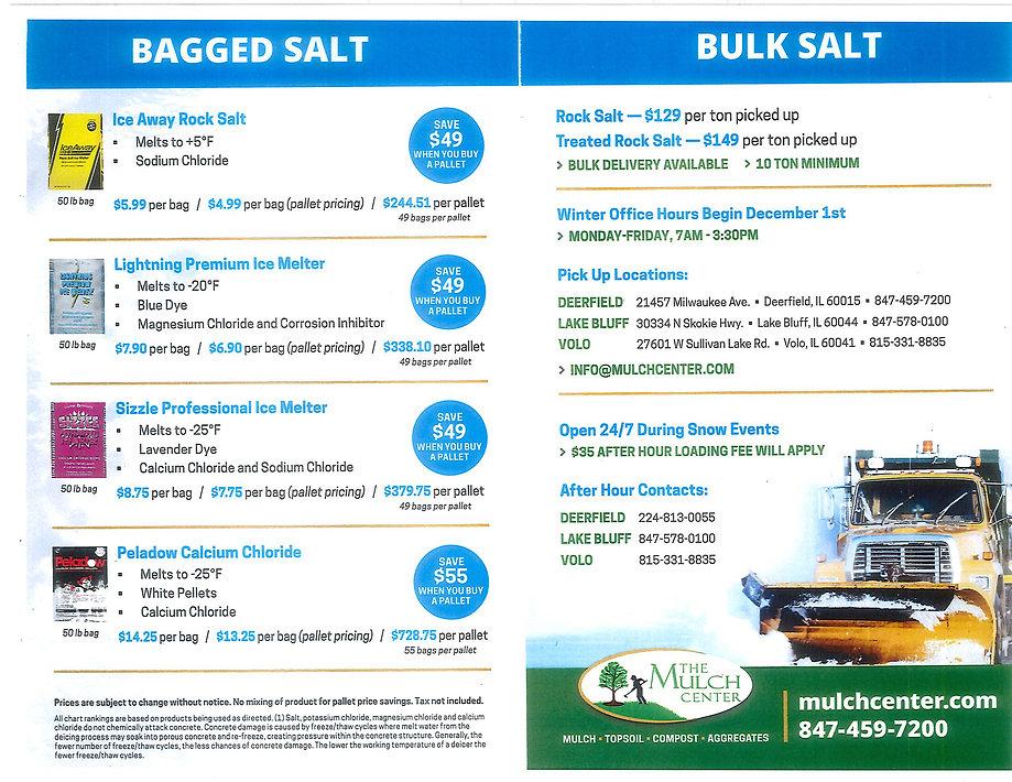 salt flyer 2020.jpg