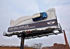 mini on ice.jpg