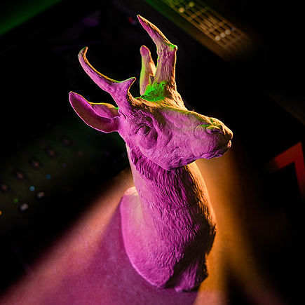 deer head sculpture created for 3d scanning and cnc milling