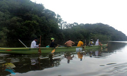 Passeios de canoa havaiana
