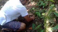 Canoa Caiçara, Radical Life e Cestas da Terra incentivam ações ambientais na Praia do Góes