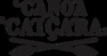 aula de canoagem em santos, passeios de canoa havaiana, Canoa Caiçara, canoagem em Santos, aulas de canoagem, passeio de canoa, canoa havaiana, canoagem oceânica, Boramar, remar, Mar, contato com a natureza, estudo do meio, treinamentos corporativos, aloha