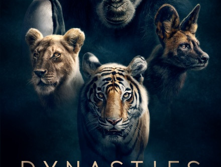 New Dynasties Book Now Out