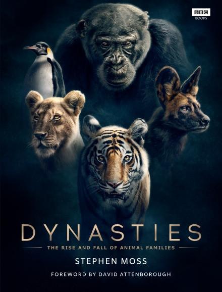 Dynastis BBC Book