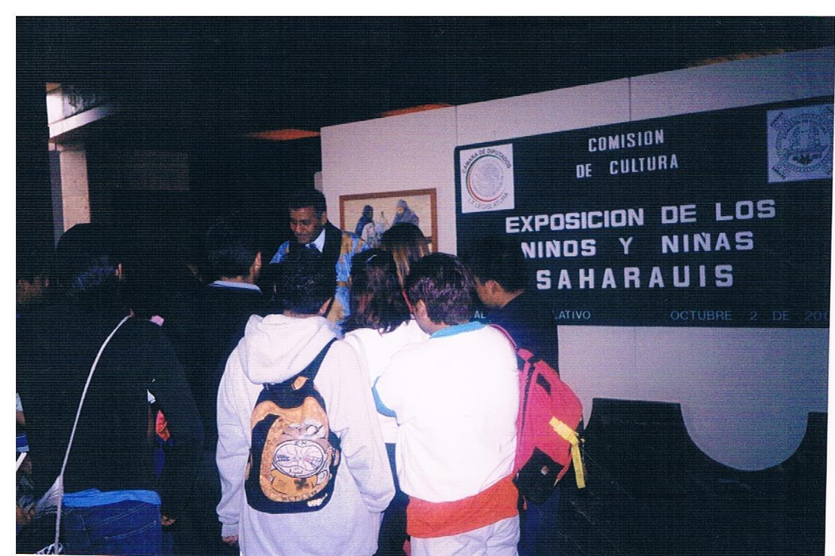 Educación_intercultural,_exposición_de_pintura_de_los_niños_y_niñas_saharauis_en_Palacio_Legislativo