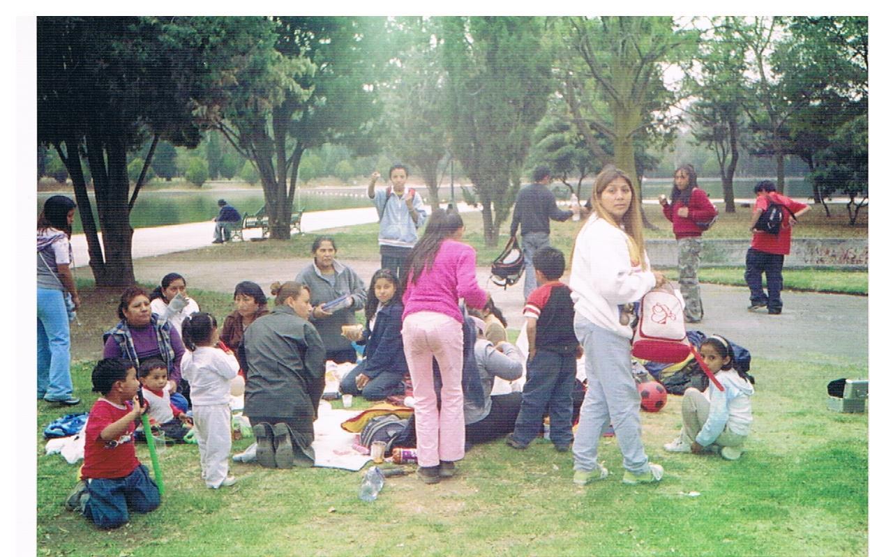Taller_de_desarrollo_de_conciencia_ecológica_-_UNAM_1