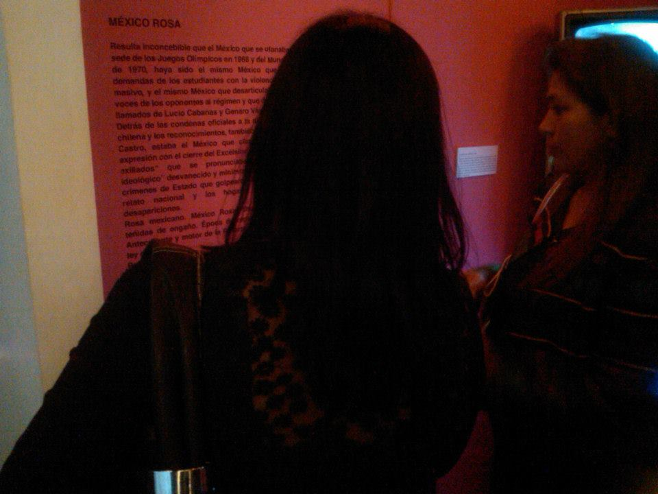 Exposición_pictográfica_Eureka_1,_Museo_de_la_Memoria_Indómita_3