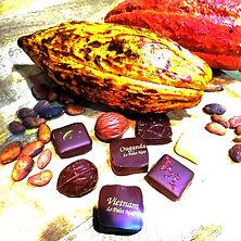 Feve de cacao Avignon LePalet Noir