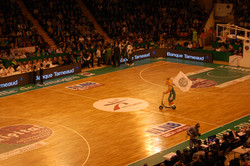 August'_mascotte_du_Limoges_CSP_en_avril_2012