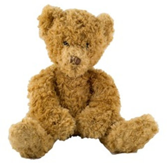 KH Kidz Teddy Bear