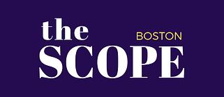 Copy-of-Box-The-Scopew_-Boston-2-e158282