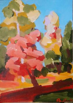 Westonbirt Autumn II