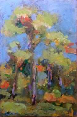 Westonbirt October