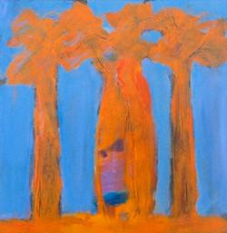 Baobabs I