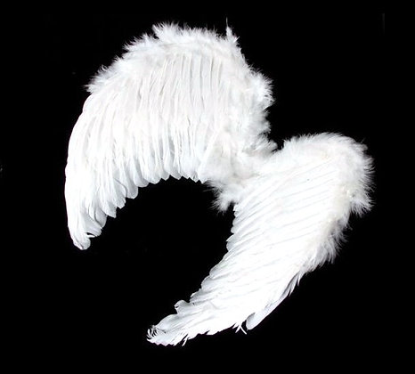 TW03 White Angel Wings