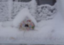 snowybirdhouse.jpg